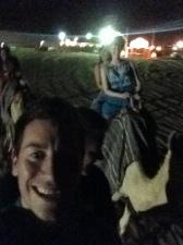 Grainy camel selfie